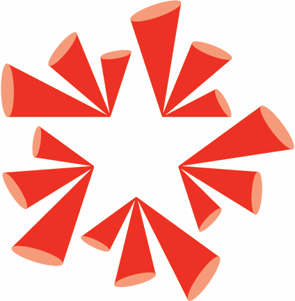 NTPA Frisco Star Icon